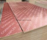 Feuilles de contre-plaqué utilisées sous la formation concrète dans les constructions (descripteur de construction)