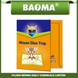 Carton de déroutement de colle de rat de Baoma