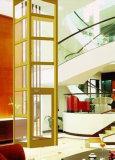 Цена лифта домашнего подъема лифта селитебное
