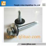 Drilling собственной личности Hex головки/выстукивая винты толя цинка шайбы винта EPDM (DIN7504K)