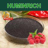 Do potássio biológico do promotor de crescimento da planta de Huminrich fertilizante orgânico de Humate