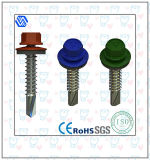 Head Hex com Flange Stainless Steel Screw (BL-0001)