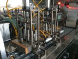 Máquina de embalagem líquida automática da bolha de Dpp-250y