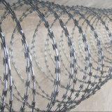 Fil en accordéon militaire galvanisé plongé chaud du rasoir Bto-22 clôturant /Neting