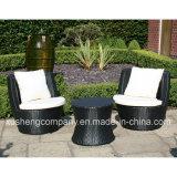 Silla de la rota de los muebles del jardín y vector de té al aire libre