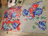 Картина мозаики, конструкция изображения мозаики для плитки стены (HMP722)