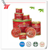 Pasta de tomate 830g de enlatado con Fiorini Marca