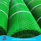 Plastikineinander greifen-Filetarbeit HDPE Filetarbeits-China-Fabrik