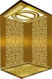 이탈리아 기술 유압 가정 별장 엘리베이터 또는 상승 (RLS-237)