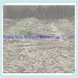 Het Hoogste Blad die van het Suikerriet van de lage Prijs het Vlekkenmiddel van het Blad van het Suikerriet verwijderen