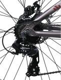 Fat leggero Tire Bike di Alloy con Shimano Derailluer