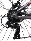Велосипед автошины облегченного сплава тучный с Shimano Derailluer