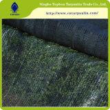 緑50%、60%の80%の陰の布、Agro陰のネット