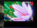 Affichage à LED Polychrome d'intérieur de matrice de points