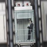 貨物家の別荘の住宅のホーム乗客のエレベーターの上昇の製造業者
