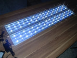 魚飼育用の水槽のための高い発電White+Blue LEDのアクアリウムライト