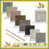New Ariston Gold/Grey/White/Black/Brown/Green/Red/Yellow/Blue Polished Granite for Wall/Floor/Stair Tiles
