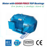 IEC Cast Iron Ie3 4pole High Efficiency Electric Motor