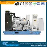 Jogo de gerador Diesel do MTU de Digitas 250kw 313kVA da utilização da terra (6R1600G20F)