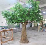 Напольный искусственний вал баньяна для недвижимости
