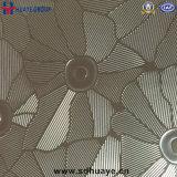 Feuille de plaque de couleur de perfection d'acier inoxydable gravée en relief