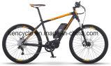 """26 """" محرّك منتصفة درّاجة كهربائيّة مع [بفنغ] [مإكس] [سستم/] جبل [إ] درّاجة ([س-2626])"""