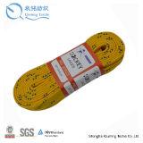 Merletto usato in tutto il mondo del hokey di ghiaccio dalla Cina