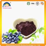 Pó nutritivo do extrato da uva-do-monte do alimento