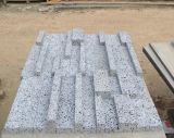 Grandi mattonelle del travertino del foro per il rivestimento della parete e del pavimento