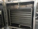 Macchina quadrata statica dell'essiccazione sotto vuoto Fzg-10