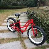 セリウムの承認750Wの雪の電気自転車