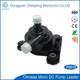 Pompe à eau de bonne qualité de circulation de C.C 12V pour le véhicule