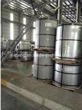 Bobina de aço galvanizado revestida de cor pré-pintada de alta qualidade / PPGI / PPG Cor diversa