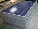 comitato solare multiuso 300W di Polycrystal con Ce e l'iso