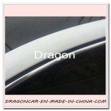 Protezione della striscia di bordo del testo fisso del PVC Chrom per la decorazione della finestra di automobile