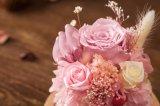 Flores creativas de Ivenran para el regalo de cumpleaños del día de tarjeta del día de San Valentín de la decoración del día de fiesta