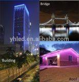 SMD2835 Neon LED Decoração Light Waterproof Outdoor LED Ribbon