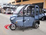 Большой рабат 3 катит автомобиль 2 Seaters электрический с рядом 80km
