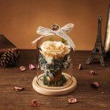 승진은 발렌타인 선물을%s 유리에 있는 꽃을 보존했다