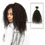 몽고 컬 브라질 Virgin 머리를 길쌈하는 도매 사람의 모발