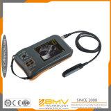 Блок развертки ультразвука ISO полный цифров Palmtop Ce Farmscan L60 ветеринарный для больших животных