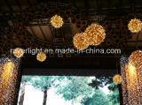 噴水の雪片が付いている屋外の休日LEDの専門のクリスマスの装飾ライト