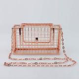 Nuevos bolsos Eb701 del partido del bolso de tarde del hierro de la manera del bolso de embrague de las mujeres