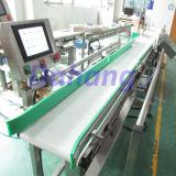 Máquina de classificação fresca/congelada da máquina/peso de classificação do peso dos peixes e do marisco