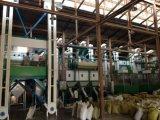 Hons+の多少の損害のレートの高い生産の穀物CCDカラー選別機