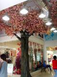 高品質の工場価格の擬似モモ木