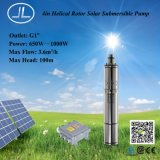 schraubenartiger Läufer 4inch Gleichstrom-Solarpumpe, versenkbares Wasser-Bewässerung-Pumpen-System
