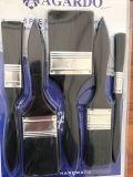 Insieme di plastica del pennello della maniglia con il materiale nero della setola