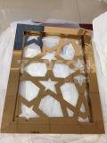 Le diviseur de pièce se pliant d'écran en métal de construction de construction examine la partition