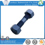 Acciaio inossidabile/acciaio legato/filetto d'acciaio Rod del bullone della vite prigioniera